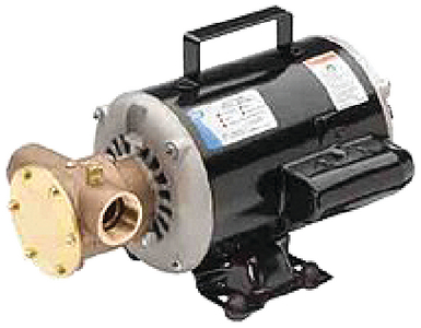 UTILITY PUMP (#6-60500003) - Click Here to See Product Details