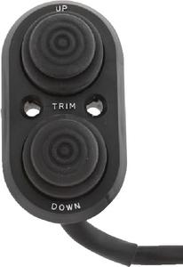 T-H MARINE TRANSOM TRIM CONTROL SWITCH (TTC1DP)