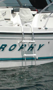 STAINLESS STEEL TELESCOPING GUNWALE HOOK LADDER (#332-TGL3) - Click Here to See Product Details